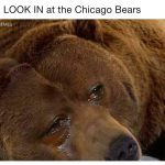 Crying Jordan Bear