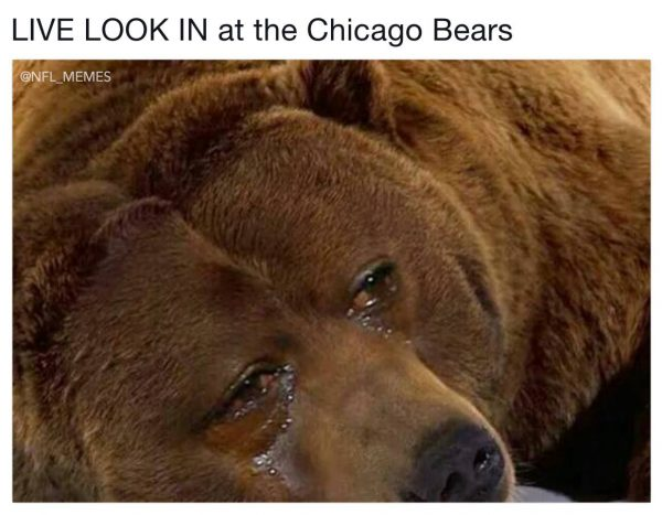 Rodgers hunting Bears