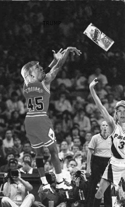 Trump Jordan 45