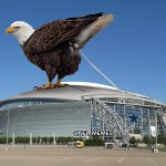 Eagles on a Stadium