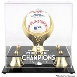 Houston Astros World Series Champions Display Case