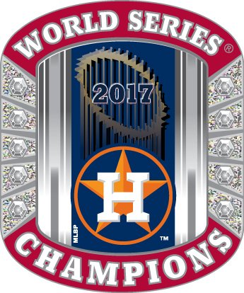 Houston Astros World Series Champions Pin