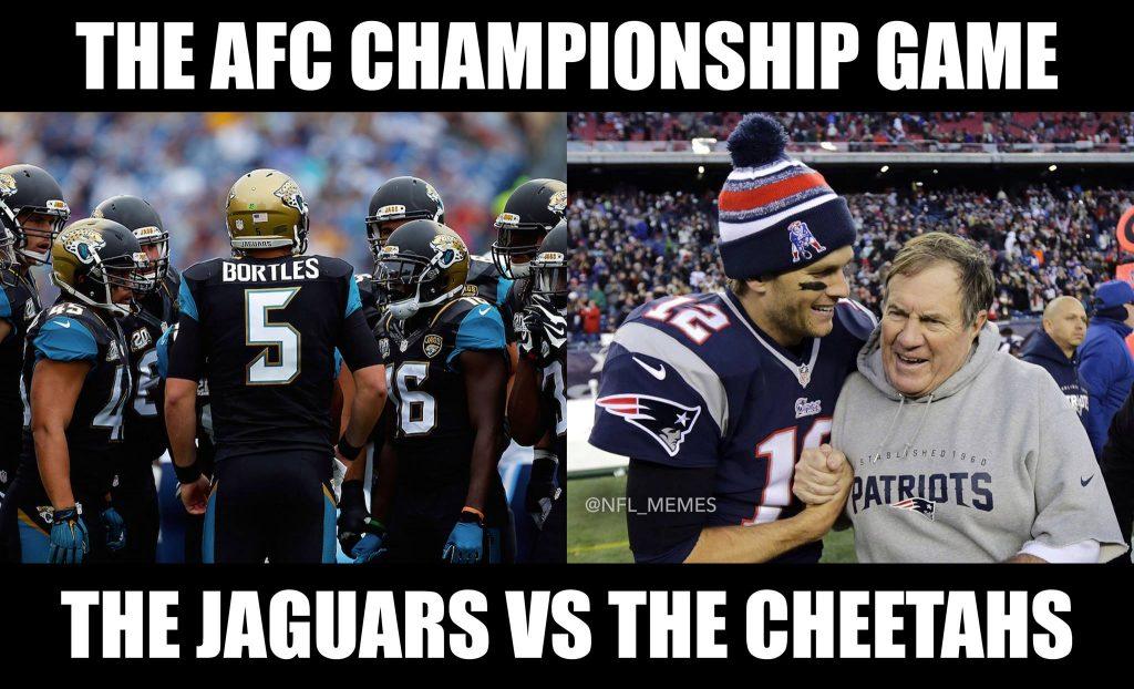 Jaguars vs Cheetahs
