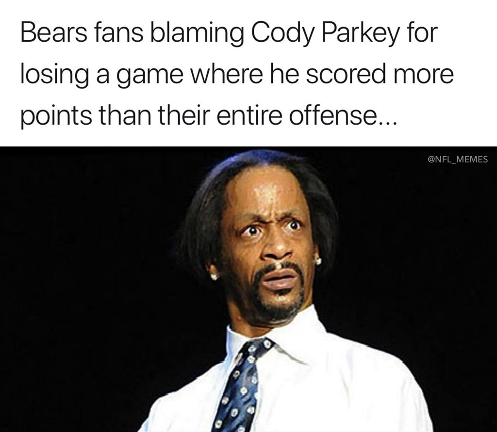 Bears fans blaming Parkey