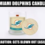 Dolphins Blown Out