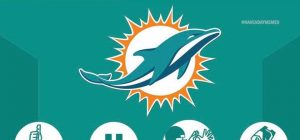 Dolphins stats