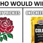 Who Would Win Rugby Meme
