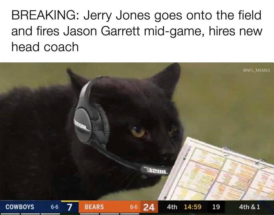 Cat new head coach of Cowboys