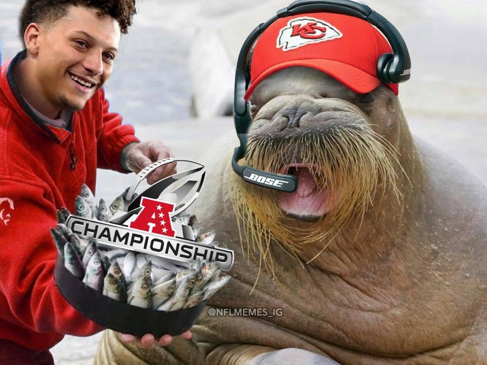 Chiefs won the AFC championship meme